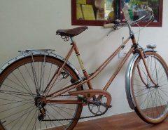 peugeot 1960